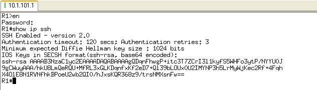 Successfully SSHed to the IOS router using RSA keys
